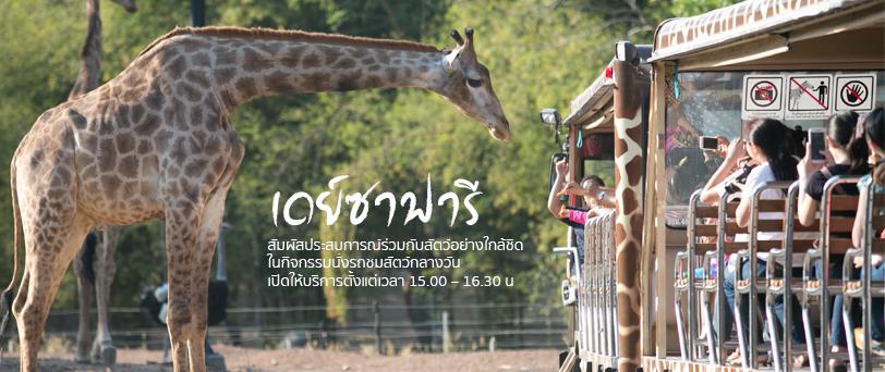 บัตรเข้าชมเชียงใหม่ไนท์ซาฟารีกลางวัน (Day Safari)