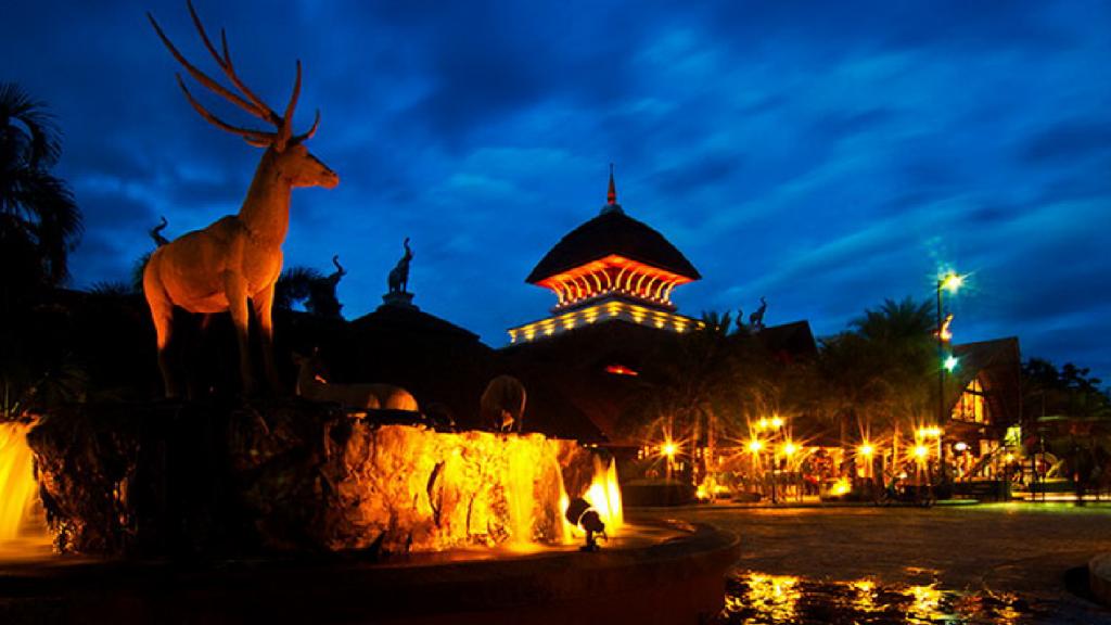 chiangmai night safari at night