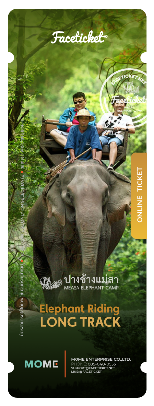 Elephant Riding 45 Minutes Ticket Ticket