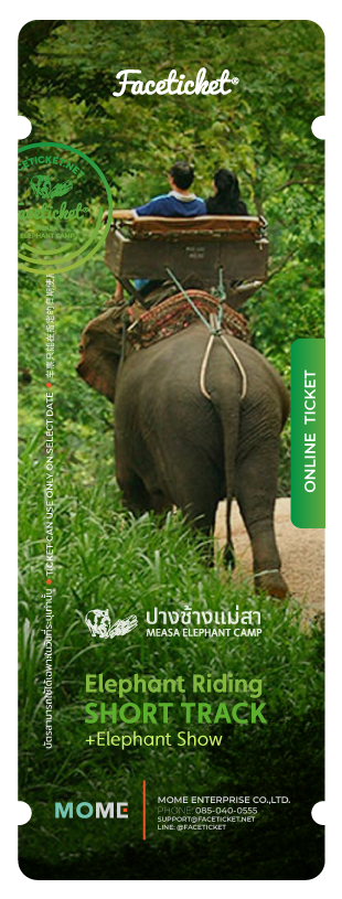 Elephant Riding 25 Minutes Ticket
