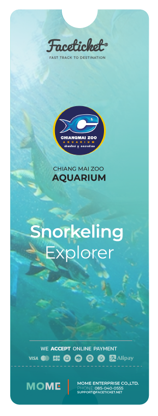 Snorkeling Explorer Ticket