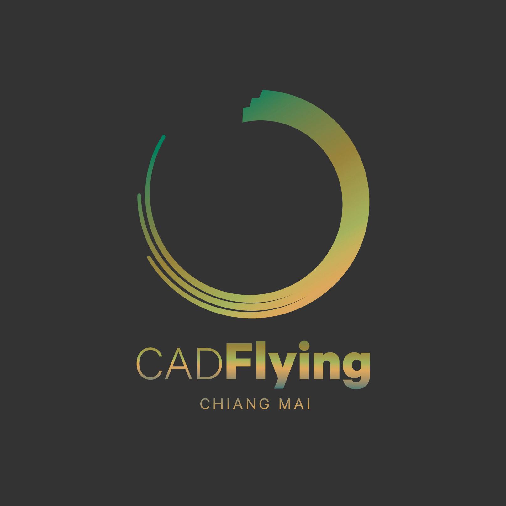 โลโก้ Cad Flying